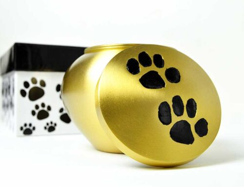 Specialized Pet Urn